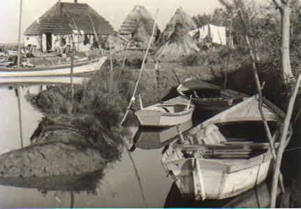 Laguna di Grado, Isola dei Beli